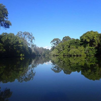 Kayak tours on glassy waters of Tallebudgera Creek, Gold Coast