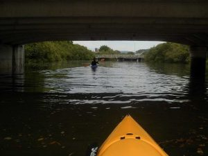 Paddling under the Breakfast Creek Bridge, Brisbane